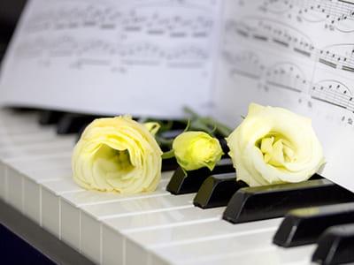 ピアノ生演奏(Bプラン以上選択のみ)